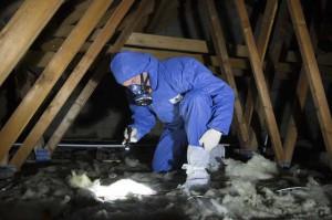 asbestos survey 3
