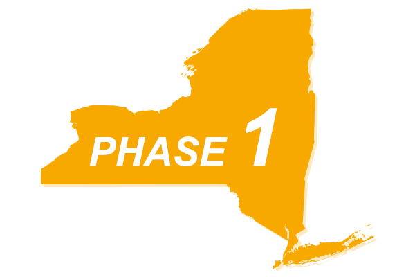New York Phase 1 Reopening