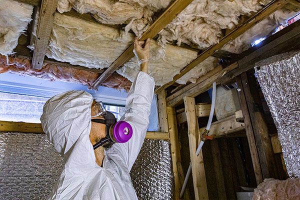 Checking for basement mold removal