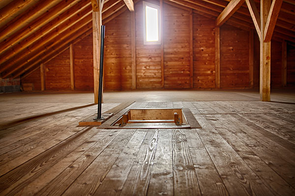 Clean Attic free from Attic Mold