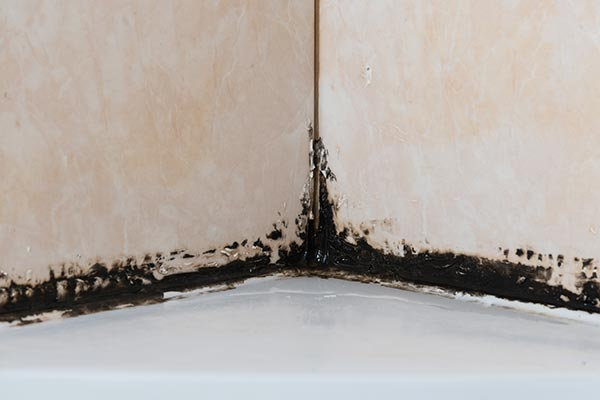 black-mold-in-corner-of-shower